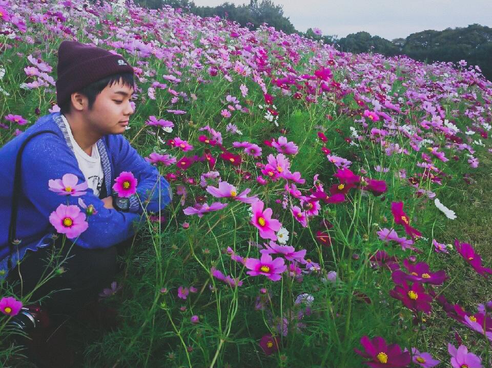 秋桜に囲まれた当時の僕